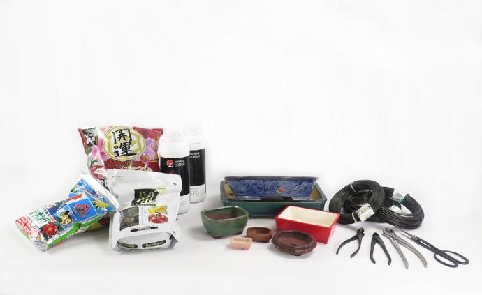 Accesorios para el cultivo de Bonsai
